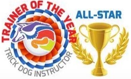 All Star Instructor